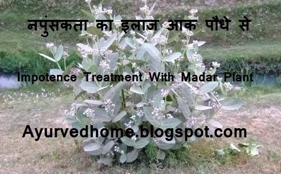 Napunsakta ka ilaj Aak Paudhe se ,  हैज़ा का उपचार आक पौधे से