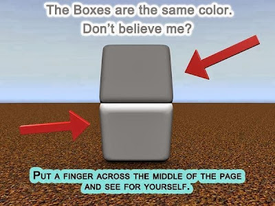 Really Weird and Cool Illusion