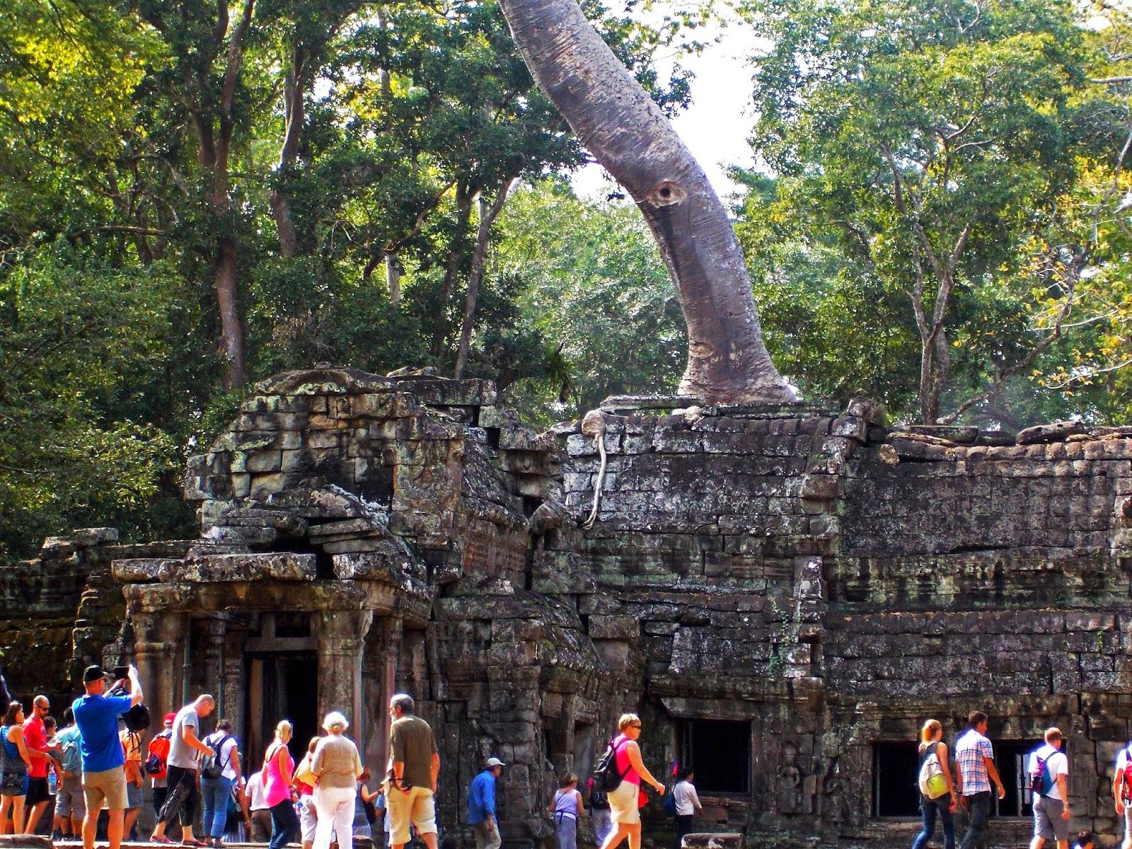 Ta Phrom, Siem Reap, Cambodia