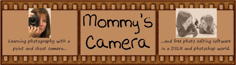 Mommy&#39;s Camera