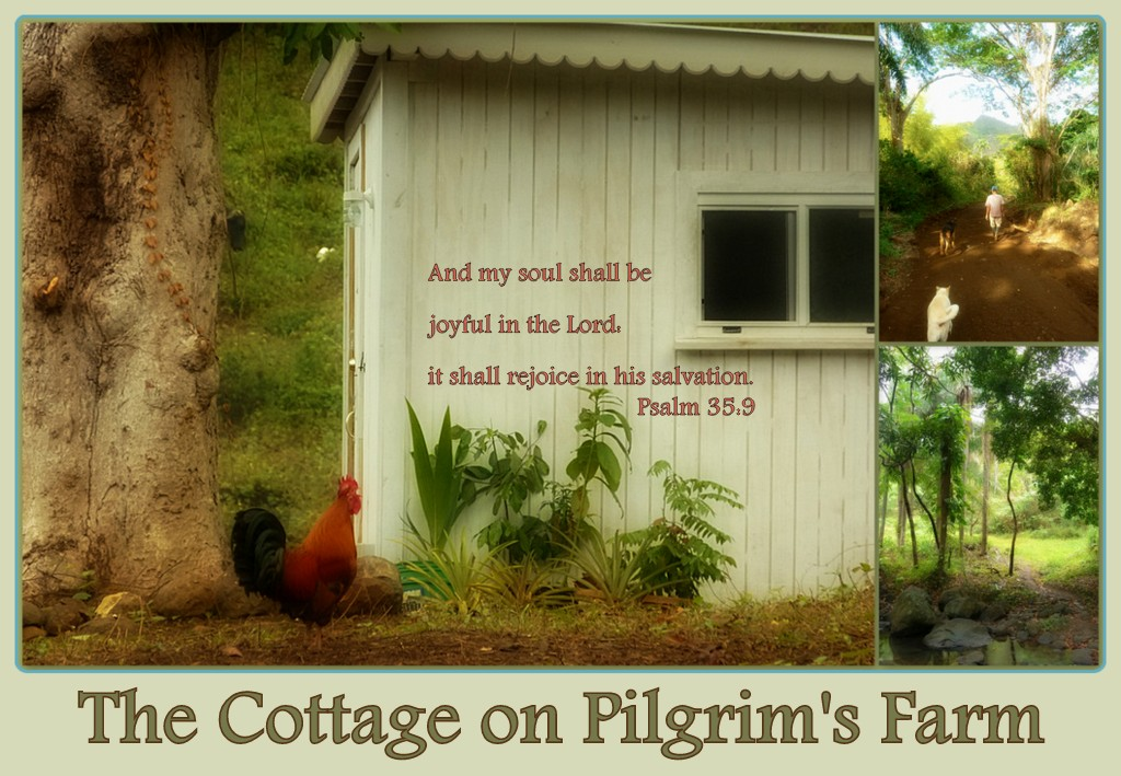 Cottage Life on Pilgrim's Farm
