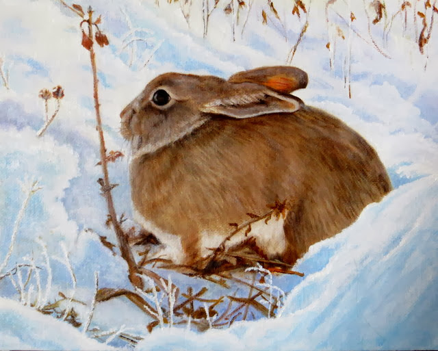 "Snow Bunny (Oil 8""x10"") - sold"