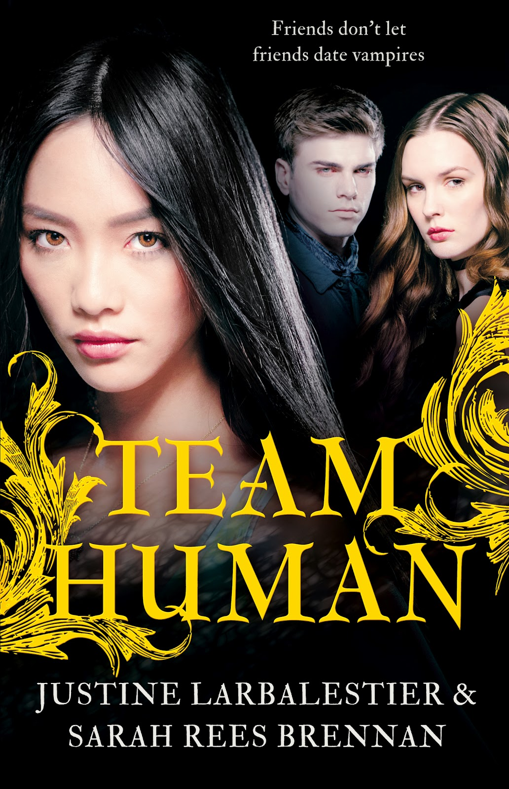 alpha reader interview sarah rees brennan and justine q right off the bat what struck me about team human was simply that you had an asian heroine sorry american born chinese abc in mel duan