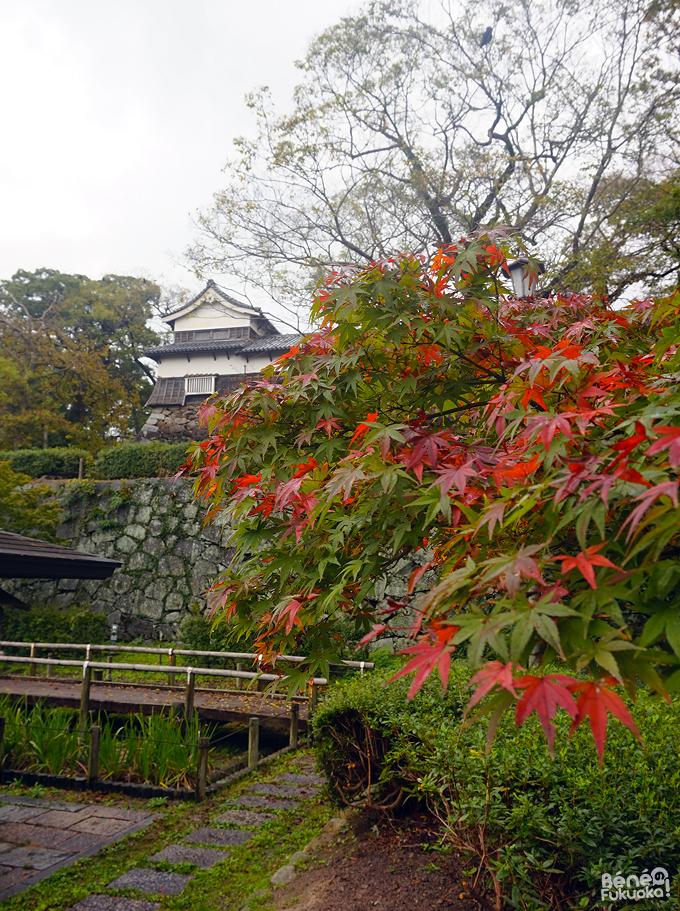 紅葉 - 舞鶴公園、福岡