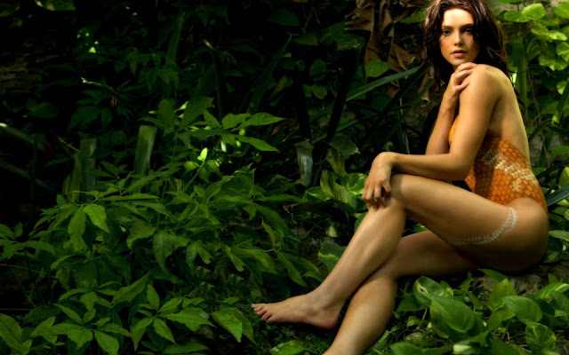 Ashley Greene HD Wallpapers Free Download