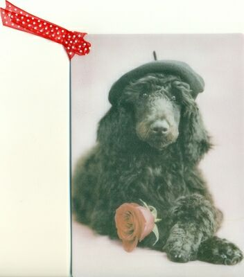 The meadowtree journal poodle time happy birthday poodle style starting out with a birthday card from inky paw one of many cute ones bookmarktalkfo Gallery