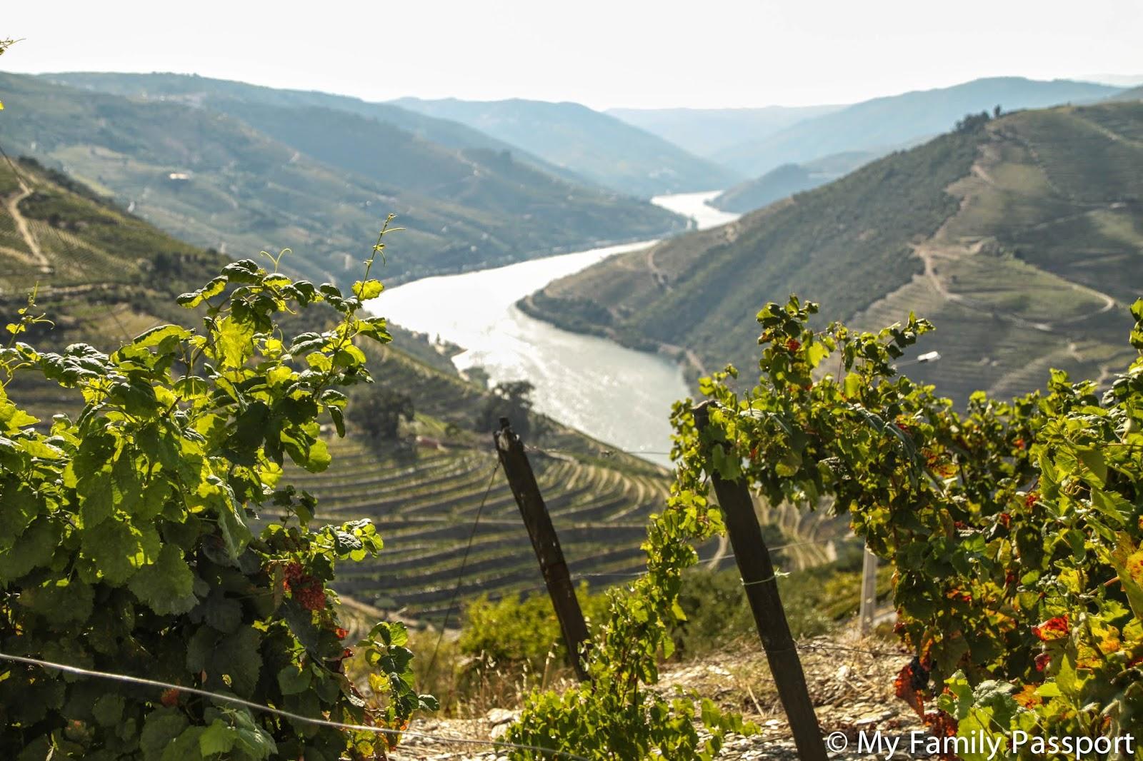 Valle Duero Portugal