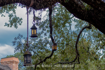 Lanterns hanging from the limbs of the Liberty Tree in Liberty Square, Magic Kingdom