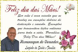 Vereador Luizinho Da Saúde Deseja A Todas As Mães Abadienses Um Feliz Dia Das Mães