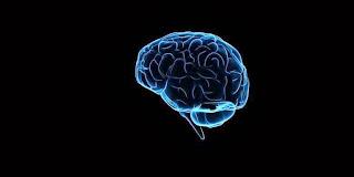 Permainan Asah Otak Tak Perbaiki Kecerdasan