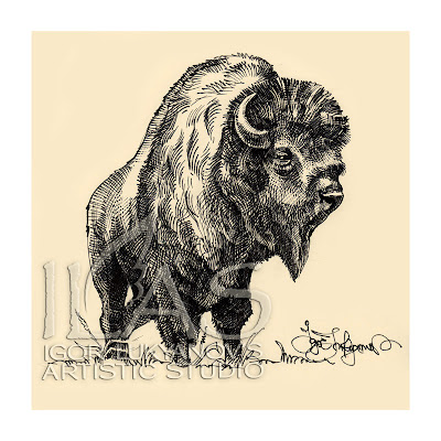 bison drawing, American buffalo image