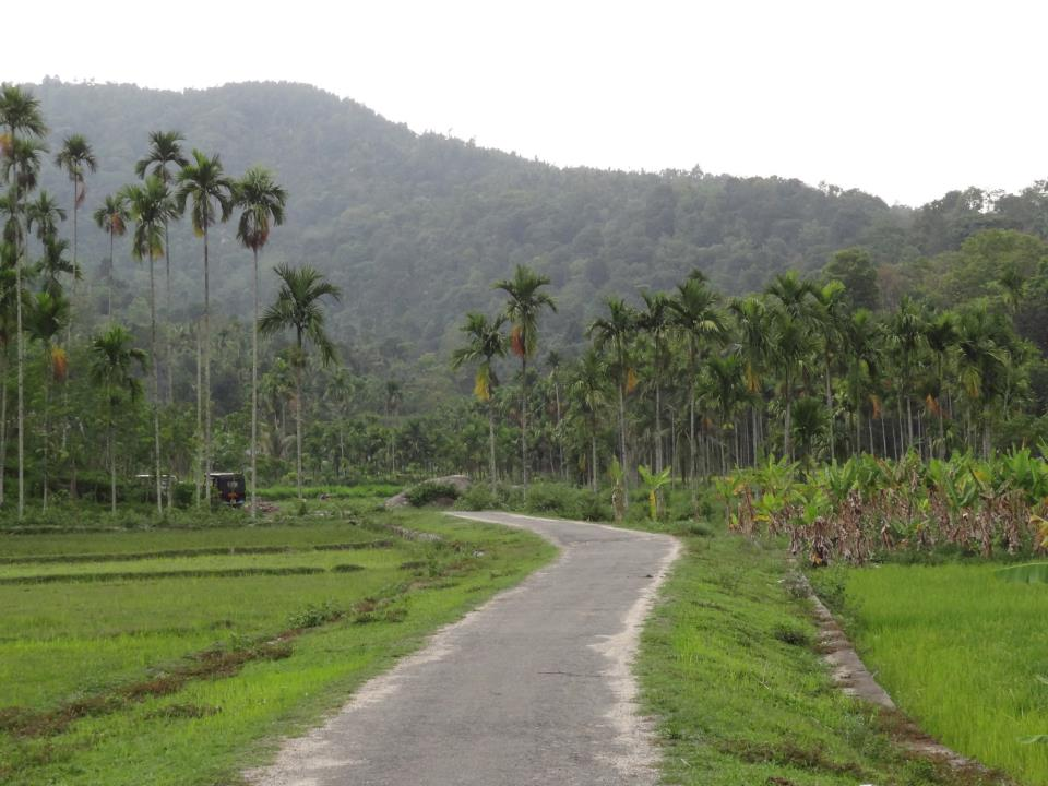 Beautiful road in Wayanad, Kerala