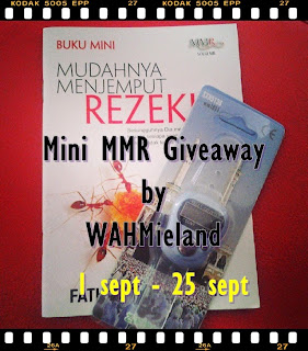 Mini MMR Giveaway