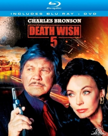 Poster Of Death Wish V The Face of Death 1994 Dual Audio 720p  Free Download Watch Online