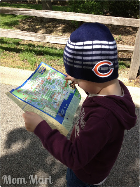 Reading the map at the Brookfield Zoo with the boys