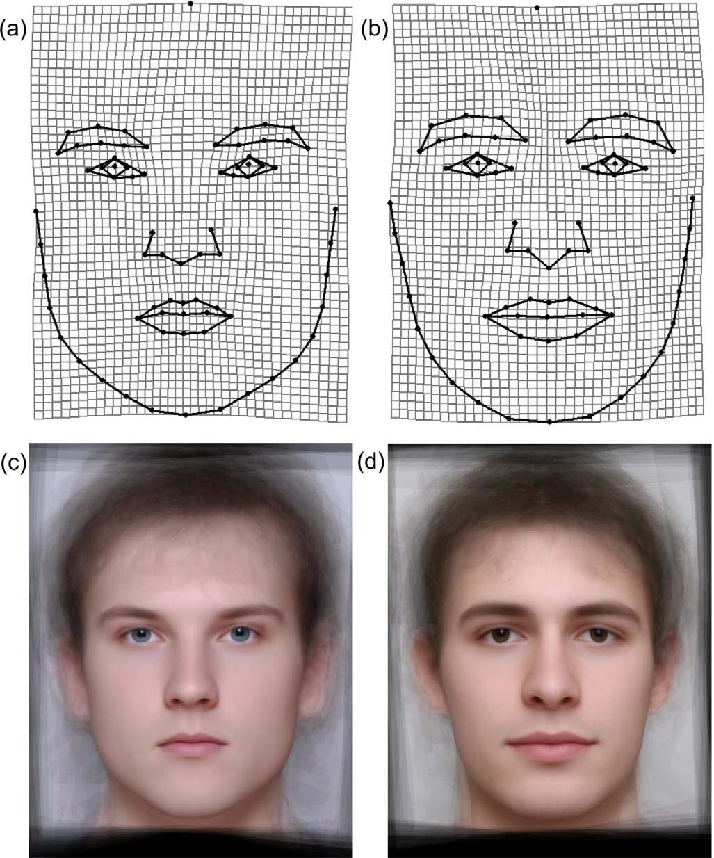 Eye Color Face Shape And Perceived Personality Traits By Peter