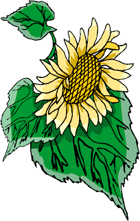 Yellow Sun Flower Clipart