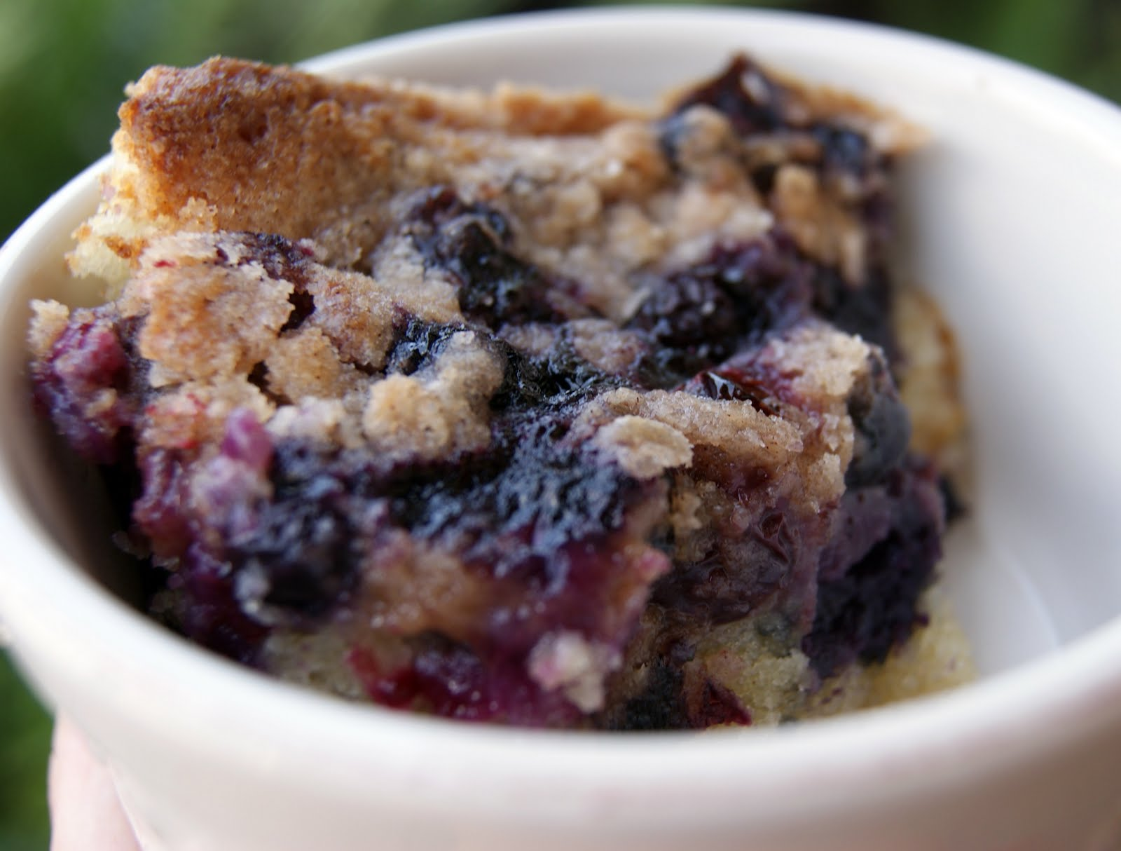 BubbleCrumb Blueberry Buckle | BubbleCrumb