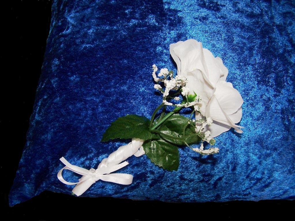 Ccoatsofmanycolours Set Of 2 Royal Wedding Kneeling