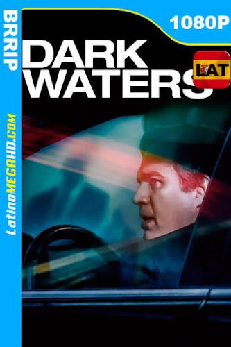 El precio de la verdad: Dark Waters (2019) Latino HD 1080P ()