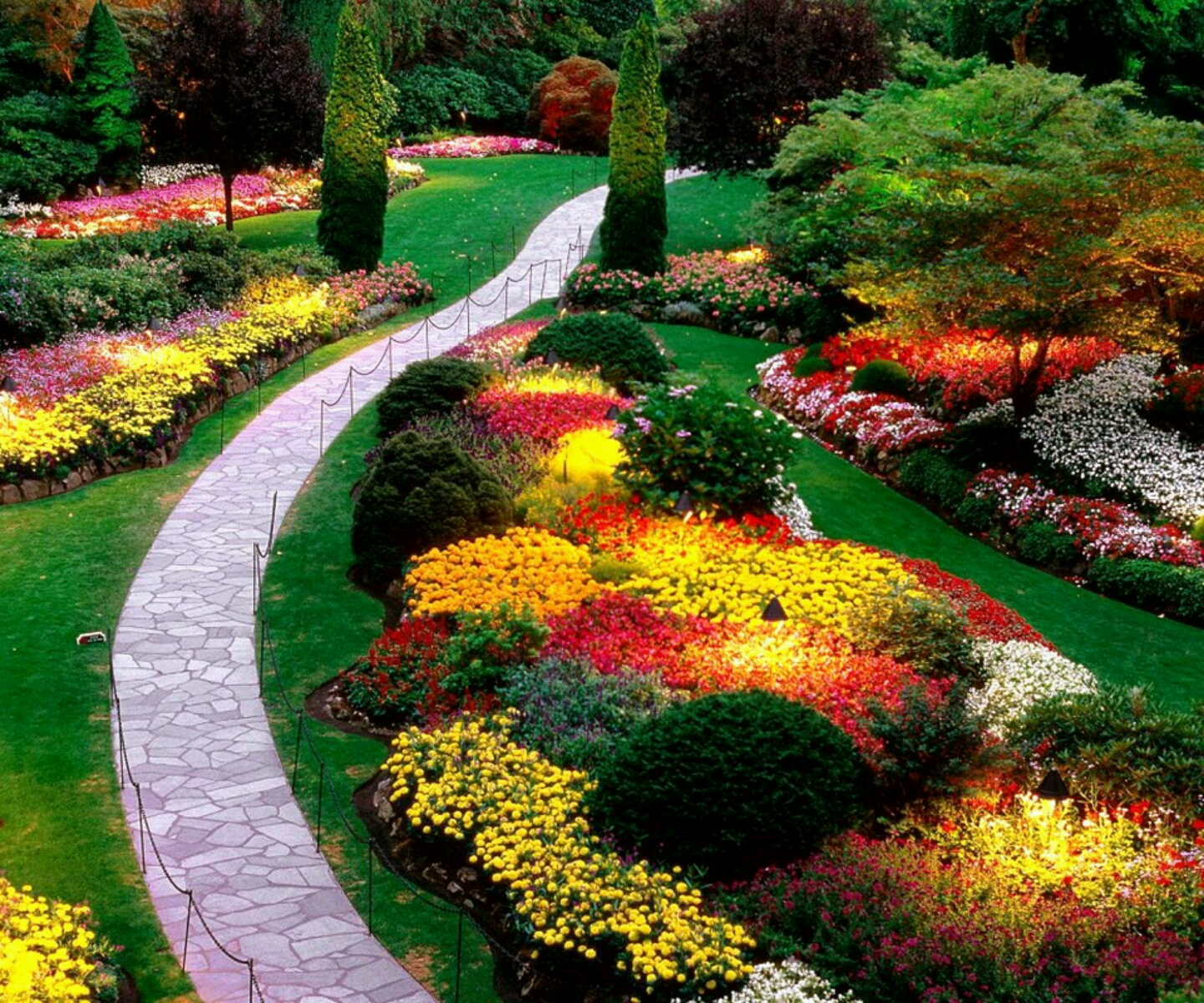 Beautiful Flower Garden 1440 x 1200