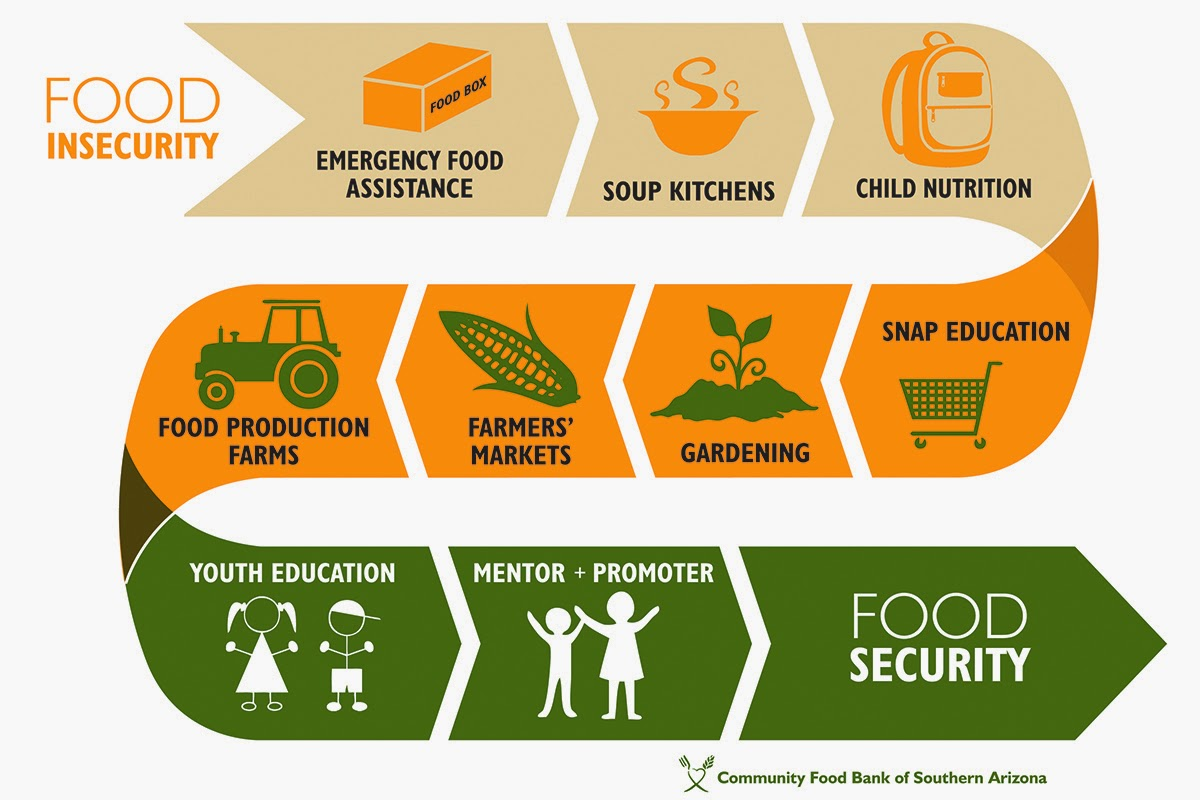 factors of food insecurity The combined effect of these factors has undeniably impacted global food production and security this article reviews the key factors influencing global food insecurity and emphasises the need to adapt science-based technological innovations to address the issue.