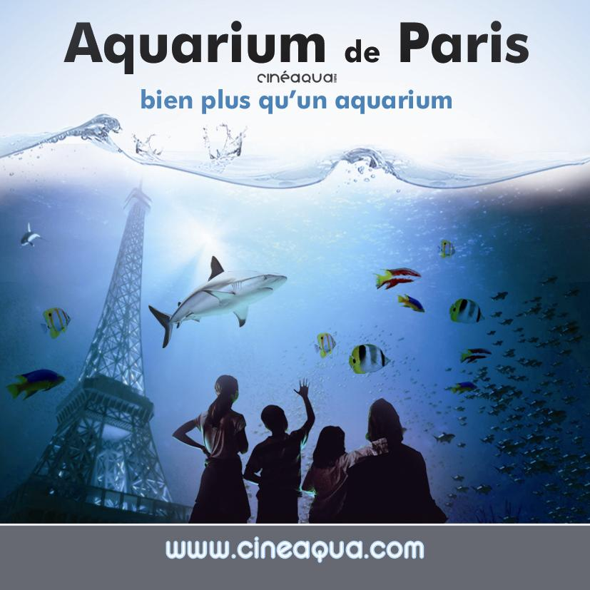 Dicas pr ticas de franc s para brasileiros chaillot e for Aquarium de paris jardin du trocadero