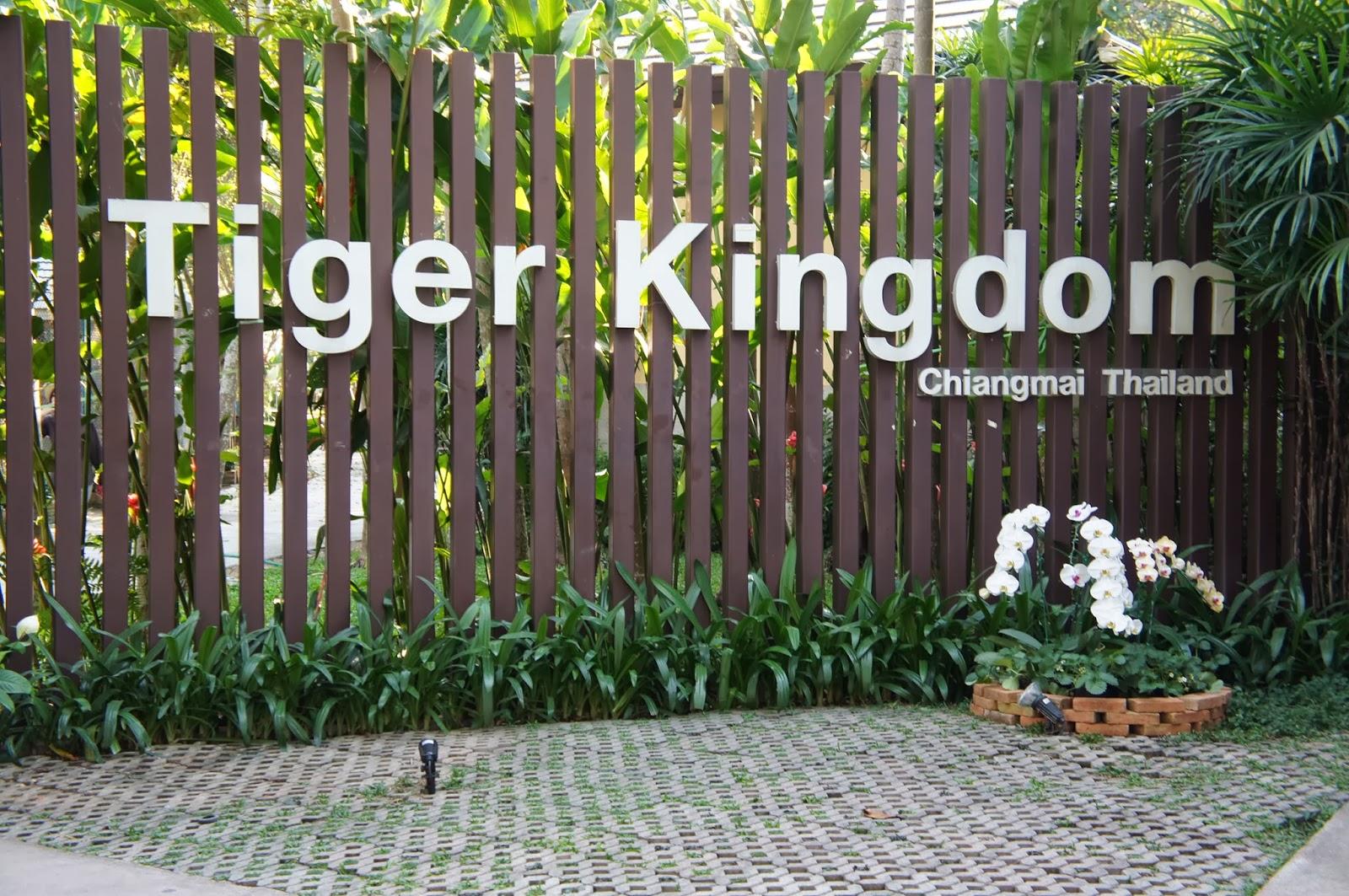 タイガーキングダム に対する画像結果