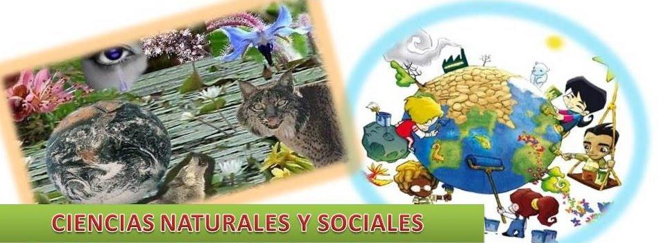 BAÚL DE NATURALES Y SOCIALES