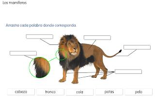 http://primerodecarlos.com/SEGUNDO_PRIMARIA/SANTILLANA/Libro_Media_Santillana_c_del_medio_segundo/data/ES/RECURSOS/actividades/04/04/010404.swf