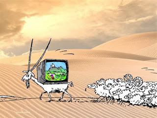 Заблуждения о пользе телевизора