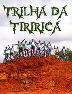 Trilha da Tiririca - O Ataque das Abelhas