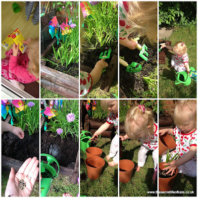 toddler gardening and planting seeds