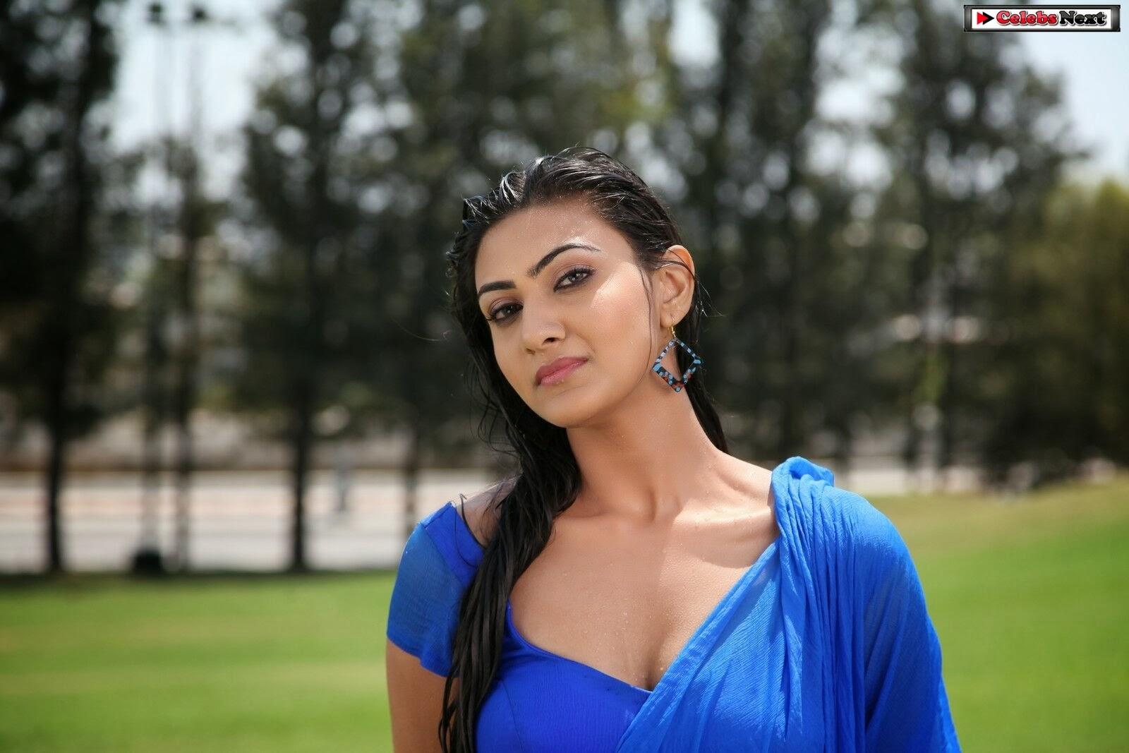 Actress Neelam Upadhyay Hot Photos Wet Saree From Action Movie Celebsnext Kannada Photo