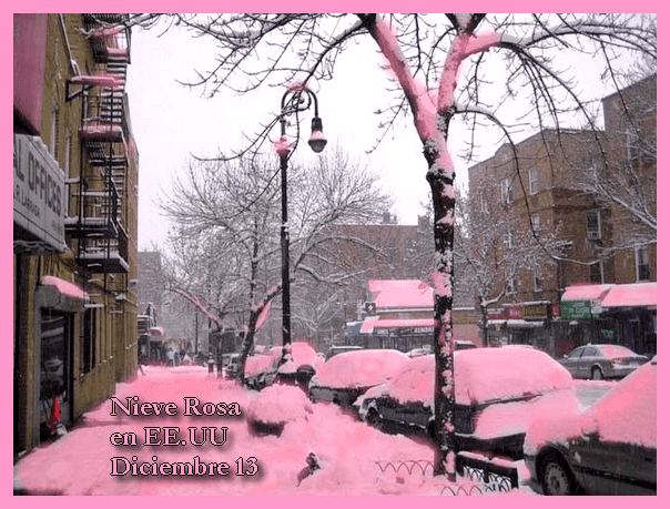 Nieve Rosa en Estados Unidos