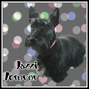 For Jazzi and her family