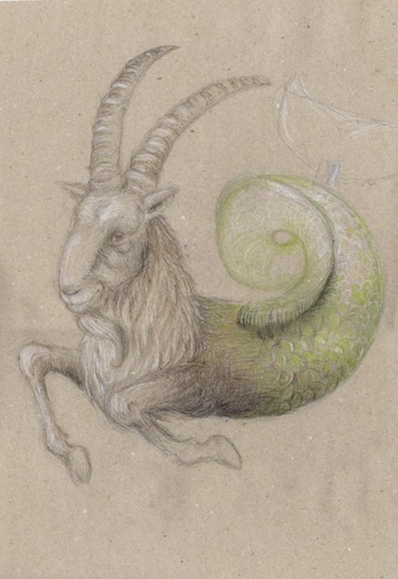 capricornus, Steinbock, Sternzeichen, Zodiac