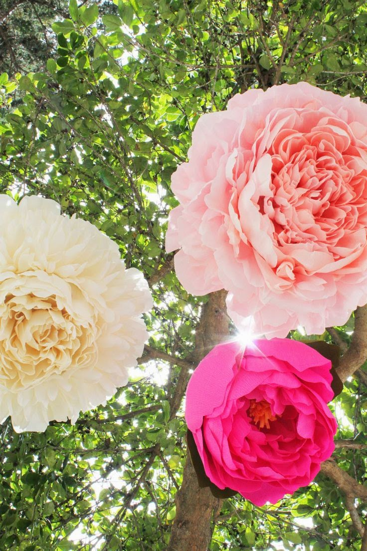 http://bloggingcornerblog.blogspot.ch/2013/07/giant-paper-peony-pinatas.html#_a5y_p=980337