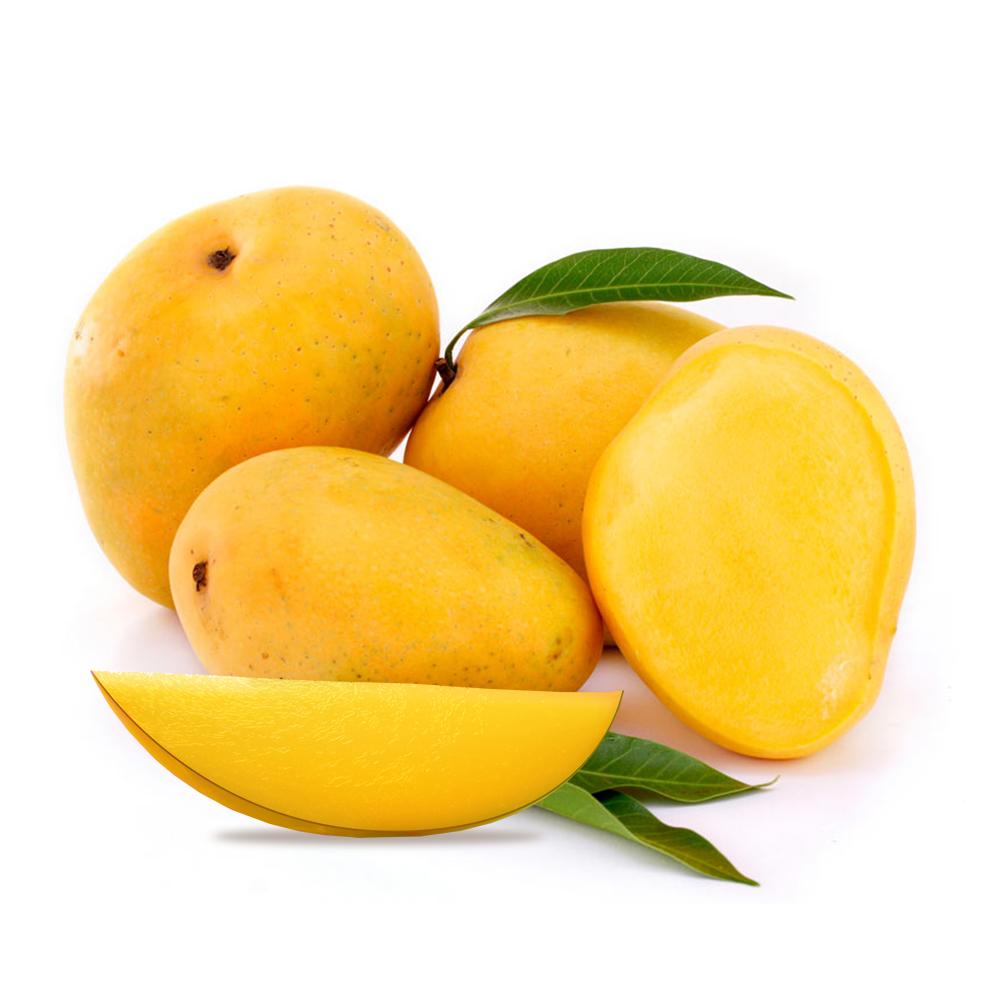APRIL SEVEN: Health Check; Mango