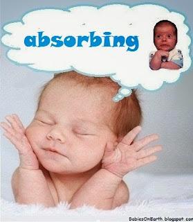 absorbing