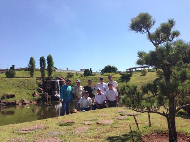 pinheiro negro do jardim japonês em Maringá
