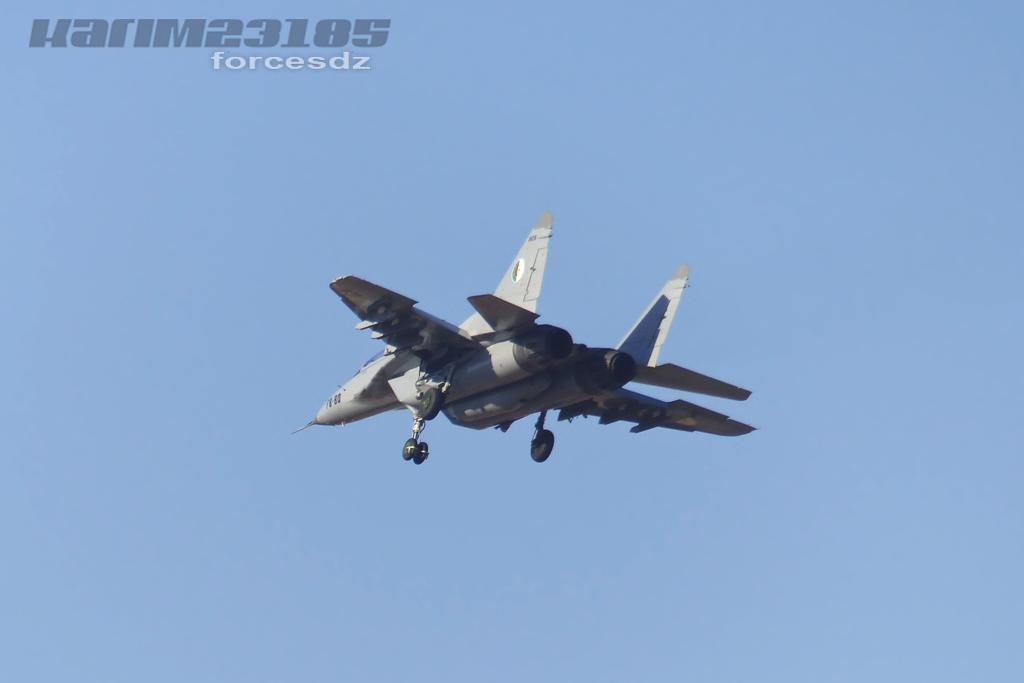 صور طائرات القوات الجوية الجزائرية  [ MIG-29S/UB / Fulcrum ] E
