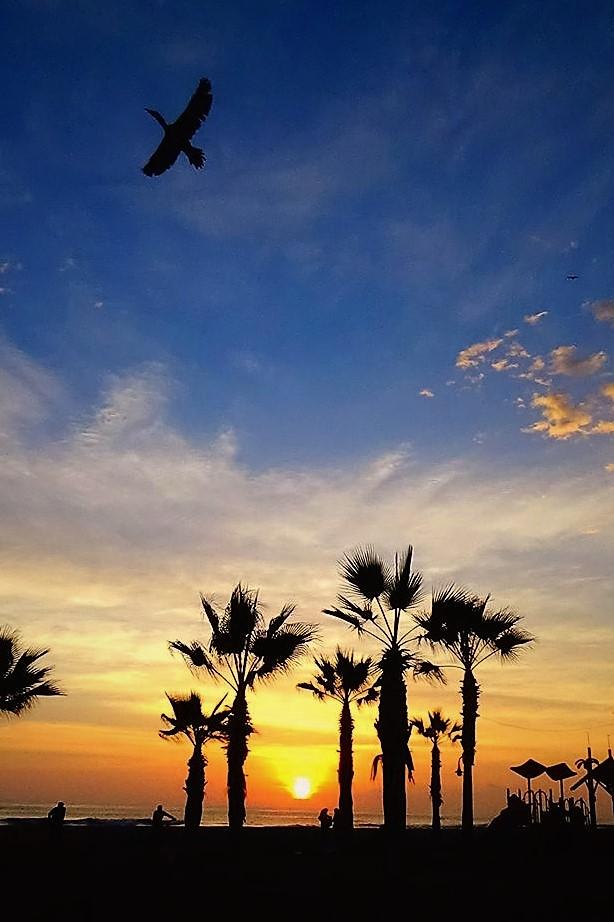 Sunset at Cavancha beach, Iquique,