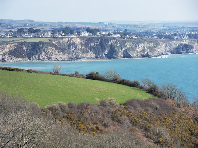 South Coast views of Cornwall from Trenarren