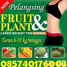 Jual Obat Pelangsing Herbal Alami - Jakarta