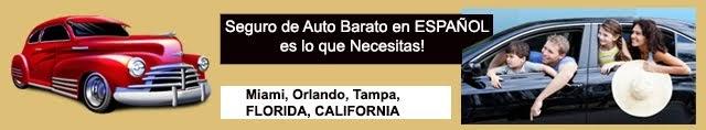 Seguros de Autos BARATOS Miami, Hialeah, Florida