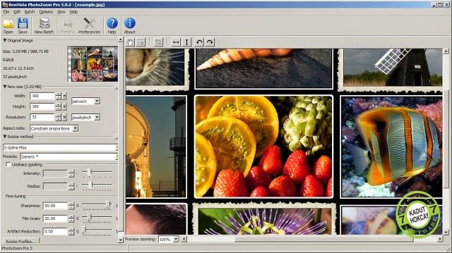 Benvista PhotoZoom Pro 6.0.4 Final Full Crack