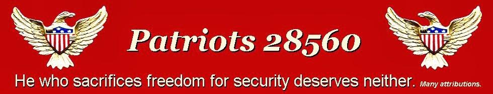 Patriots 28560
