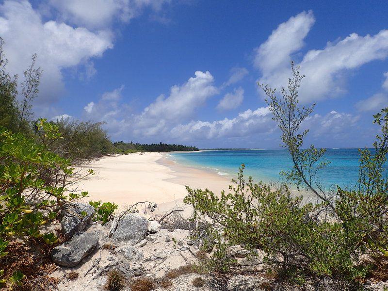 ビキニ環礁の画像 p1_19