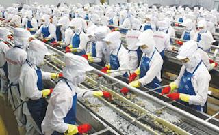 Tuyển 10 nữ chế biến thực phẩm tại Nhật Bản